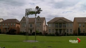Markham residents have beef with bovine sculpture