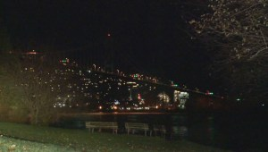 Windstorm blasts through Stanley Park