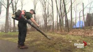 Beaconsfield considers leaf blower ban