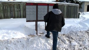 Winnipeg residents frustrated by windrows blocking driveways and sidewalks