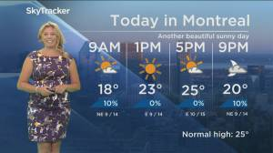 Global News Morning weather forecast: Thursday August 15, 2019