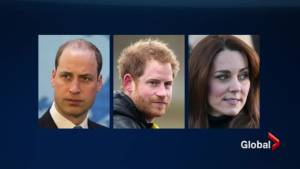 Are Will, Kate and Harry not working as hard as older royals? (02:22)
