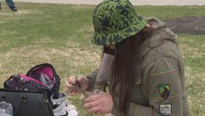 Marijuana legalization a potential revenue stream for Manitoba government