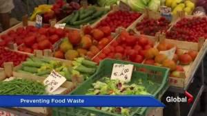 Food waste a billion dollar problem in Italy