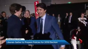Liberals gather to prepare policies for 2019 Election