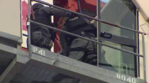 Woman screams as police pull her from construction crane in Toronto