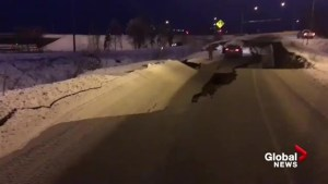 Road splits, collapses outside Anchorage, Alaska following earthquake