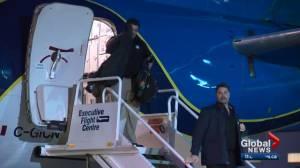 Teams arrive in Edmonton for Grey Cup week (01:55)