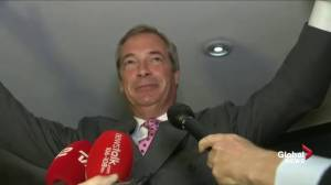 Nigel Farage: `Let June 23rd go down in our history as our independence day`