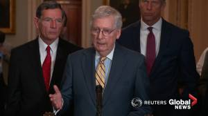Mitch McConnell says accusations against Epstein 'horrendous,' will defer to Trump on Acosta