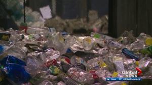 90% of Edmontonians recycle, but many are doing it wrong