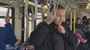 Winnipeg police ride Transit to catch distracted drivers