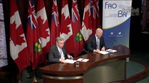 Debt will be raised, not lowered, by partial sale of Hydro One: FAO