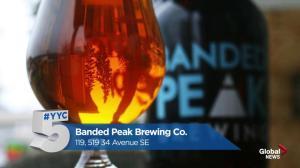 #YYC5 picks best brew spots in Calgary