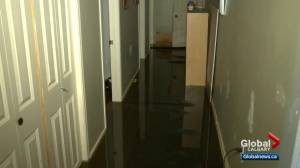 Flooding prompts local state of emergency in Beiseker