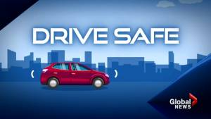 Drive safe tips: Avoiding distracted driving
