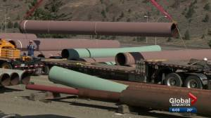 Court ruling on Trans Mountain project raises  new questions about pipelines and politics