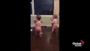 Alberta's Webb quadruplets can't stop hugging