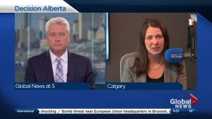 Gord Steinke speaks to Global News Radio's Danielle Smith about Day 1 of Alberta election campaign