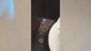 Viral video shows several needles inside bathroom at Regina McDonald's