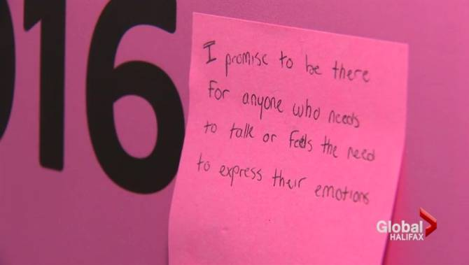 Pink Shirt Promise anti-bullying campaign kicks off in Dartmouth ...