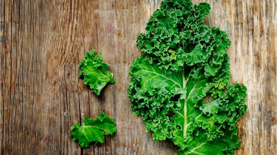 Can you eat kale raw like lettuce
