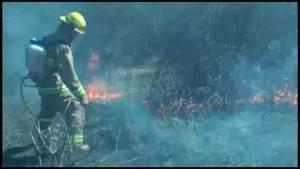 Grass fire in Alnwick Haldimand Township