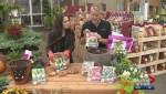 Gardenworks: Planting spring bulbs