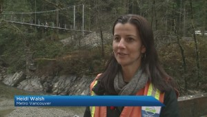 New North Shore suspension bridge set to open