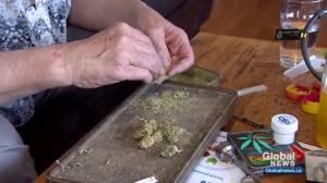 Cannabis costs impacting Edmonton tax increase