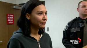 Glee's Naya Rivera arraigned for domestic battery charges