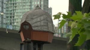 Squire Barnes tries to solve False Creek art mystery