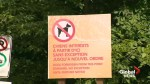 Dogs no longer welcome on Hudson's Sandy Beach