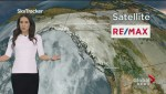 BC Evening Weather Forecast: Nov 11