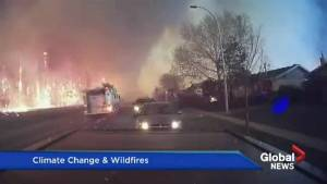 Global warming to have a significant impact on wildfires in Canada