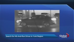 York Regional Police search for driver involved in serious hit and run
