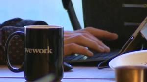 Co-working the next trend in office environments (02:10)