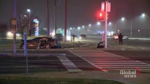Separate crashes send multiple people to hospital and kill one woman in Brampton