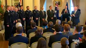 Australians honoured for services during Thai cave rescue