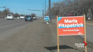 Lethbridge sees growing number of campaign signs (01:42)