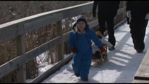 Kingston residents celebrate Family Day with outdoor activities and visit local museums