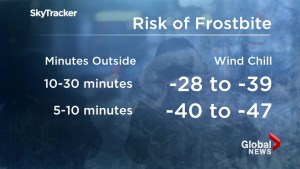 Cold weather prep: what you need to know before the deep freeze sets in