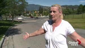 'Our car was inundated with liquid poo falling from the sky': Kelowna driver
