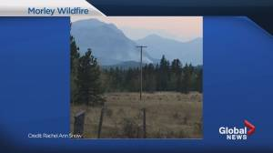 Wildfire near Morley, Alta. contained