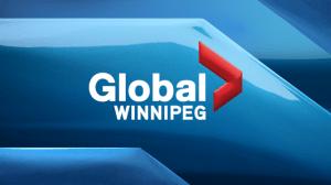 Winnipeg Goldeyes Adam Heisler tees up season
