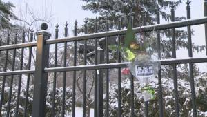 RAW: Memorial flowers laid at French embassy in Ottawa