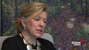 Canada's privacy laws must cover political parties: former privacy commissioner