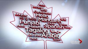 Canadians speaking more languages than ever before
