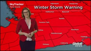 Winter Storm Warning in place for Southern Ontario