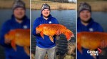 Fisherman reels in 20-pound 'goldfish' from Kentucky pond